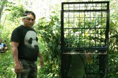 BKSDA Pasang Perangkap untuk Beruang yang Serang Manusia di Riau