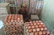 Harga Telur Melonjak, Pedagang Gorengan Berpaling ke Telur Malaysia