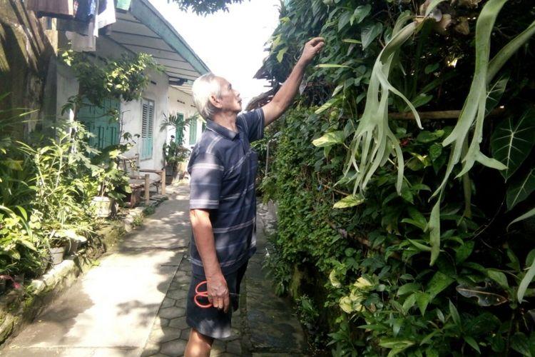 Sri Harjanto (75), warga RT 3/RW 3, Kelurahan Serengan, Kecamatan Serengan, Kota  Solo, Jawa Tengah merawat tanaman obat keluarga yang siap disedekahkan bagi yang membutuhkan.