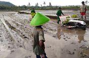 Modernisasi Pertanian untuk Sejahterakan Petani