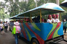 Gramedia Zoo Adventure, Edukasi Anak-anak tentang Satwa di Ragunan