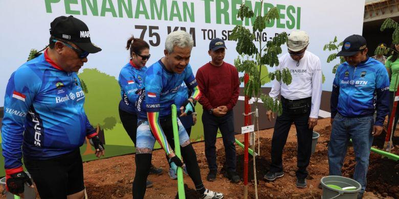 10 Ribu Pohon Trembesi Bakal Payungi Jalur Tol Semarang - Batang