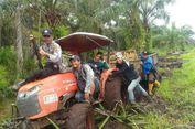 BKSDA Riau Tambah 2 Tim Medis untuk Tembak Bius Harimau 'Bonita'