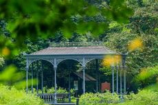 5 Spot Instagramable di Singapore Botanical Garden