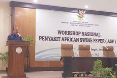 Pemerintah Indonesia Waspadai Penyebaran Penyakit African Swine Fever