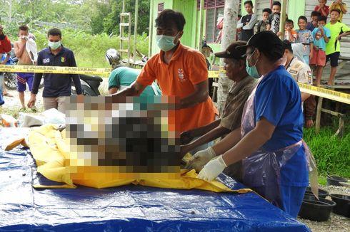 Orangutan yang Mati di Kalahien Itu Korban Berondongan 17 Peluru Senapan Angin