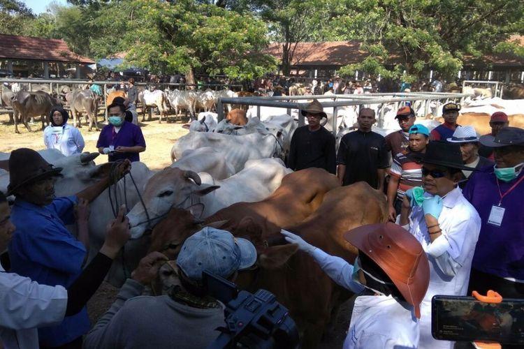 Bupati Purwakarta Dedi Mulyadi saat sidak pedagang hewan kurban, Senin (28/8/2017).