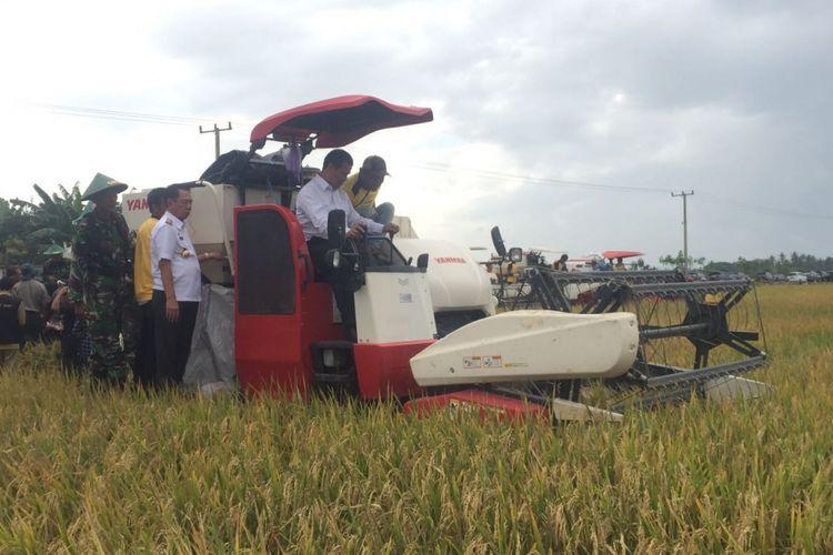 Menteri Pertanian Andi Amran Sulaiman memanen padi bersama petani setempat saat kunjungan kerja ke Kabupaten Wajo, Sulawesi Selatan, Kamis (7/9/2017).