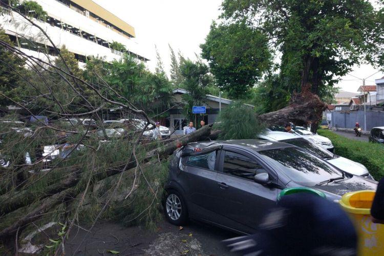 Cuaca buruk menyebabkan pohon tumbang hingga menimpa mobil.