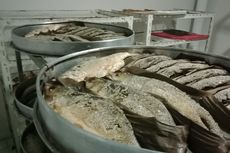 Jalan-Jalan ke Semarang, Yuk Makan Ikan Bandeng Kaya Nutrisi