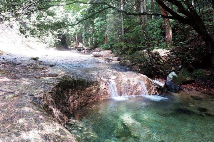 Kamu akan merasa rileks saat berjalan di tepi sungai yang indah ini