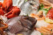 Ingin Segera Punya Momongan? Penelitian Sarankan Konsumsi 'Seafood'