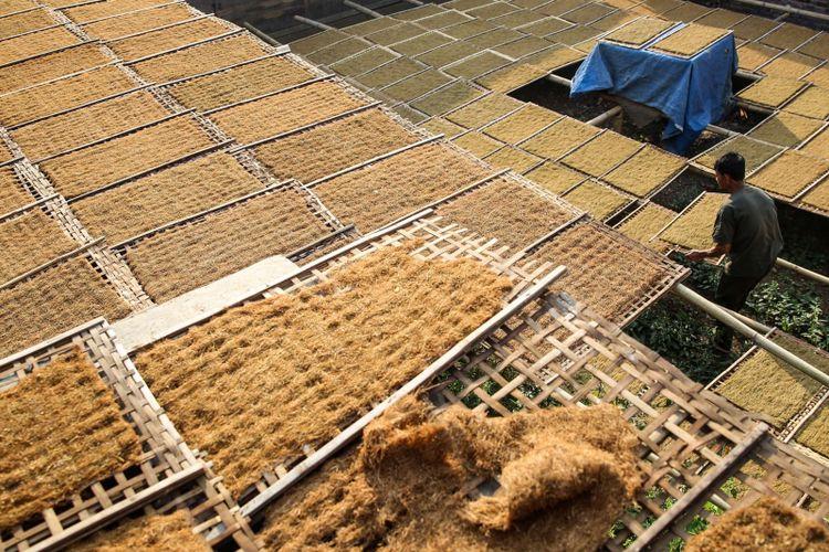 Petani menjemur daun tembakau rajangan yang sudah diiris didepan rumahnya di Kampung Ciburuy, Kecamatan Bayongbong, Kabupaten Garut, Jawa Barat, Rabu (25/7/2018). Tembakau merupakan salah satu komoditas pertanian utama di kasawan kaki Gunung Putri, sasaran pasar tembakau di antaranya Jawa tengah dan Jawa Timur.