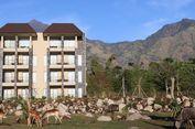 Hotel Bintang 4 Hadir di Taman Safari Prigen