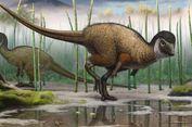 Mengenal Paleoartis yang Hidupkan Kembali Makhluk Paleolitikum