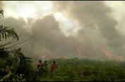 Sebabkan Kebakaran Lahan hingga 2 Hektar, Petani Ini Diciduk Polisi