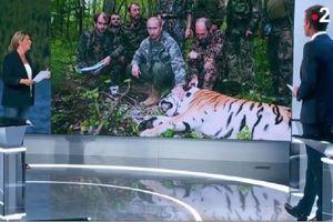 Berita Palsu soal Putin Berburu Harimau Raih Penghargaan di Perancis