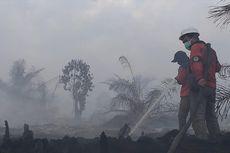 5 Fakta Bencana Karhutla, Ancaman Jokowi hingga Gubernur Riau Kena ISPA
