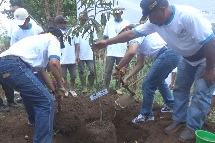 Penanaman bibit pohon di Desa Wonomerto, Kecamatan Wonosalam, Kabupaten Jombang, Jawa Timur,