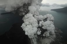 Krakatau Meletus 60 Kali Sehari, Peluang Picu Tsunami Kecil