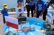 Jitu Ramal Pertandingan Piala Dunia, Gurita Ini Justru Jadi Sashimi