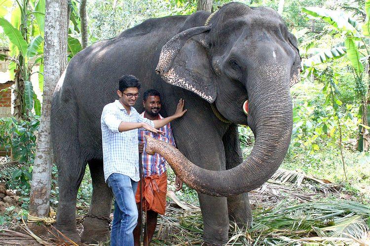 Dalam foto yang diambil pada 18 April 2016, seekor gajah bernama Dakshayani mendapat gelar sebagai Nenek Gajah. Dakshayani meninggal dalam usia 88 tahun pada Selasa (5/2/2019).