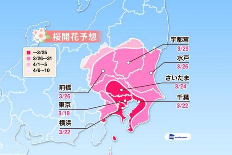 Prediksi sakura mekar di area Kanto (Prediksi diumumkan tanggal 16 Januari 2019/ Weather News).