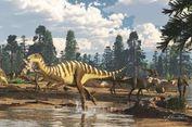 Peneliti Temukan Dinosaurus Seukuran Walabi di Australia