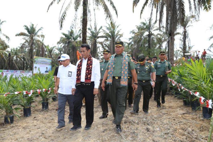 Kementerian Petanian melakukan peremajaan kelapa sawit di Desa Ujung Tanjung, Kecamatan Sungai Bahar, Kabupaten Muaro Jambi, Provinsi Jambi pada Senin (10/9/2018).