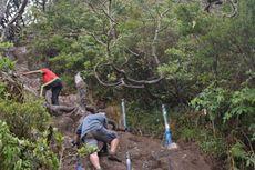 Gunung Gede Pangrango Segera Dibuka, Ini Syarat Baru untuk Pendaki