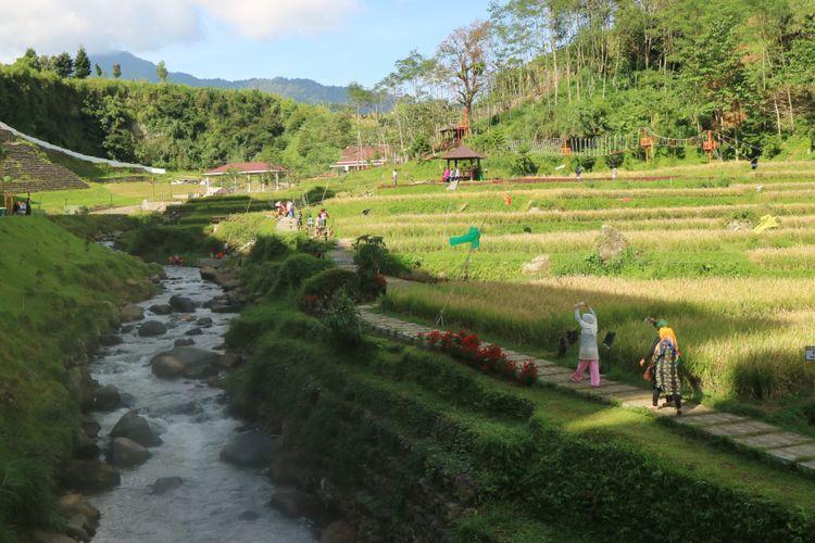 Sungai dan pesawahan jadi pemandangan sekaligus atraksi wisata yang bisa dinikmati wisatawan di Sahid Eminence Hotel Convention & Resort Ciloto, Puncak.