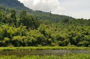 Tersembunyi di Tengah Hutan, Ini Danau Koliheret di Sikka Flores