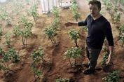 Sebentar Lagi, Bertani di Mars bak Film 'Martian' Bisa Terwujud