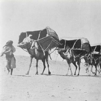 Karavan unta menuju ke Mekah, 1910. (Step Feed)