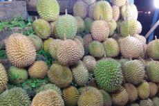 Absen 2 Tahun, Festival Durian Lolong Kembali Digelar