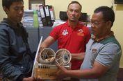 Polisi Gagalkan Perdagangan 2 Ekor Kakatua Dalam Paralon dari Malang ke Bandung