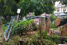 Pengendara Berteduh, Motornya Rusak Tertimpa Pohon Tumbang di Depok