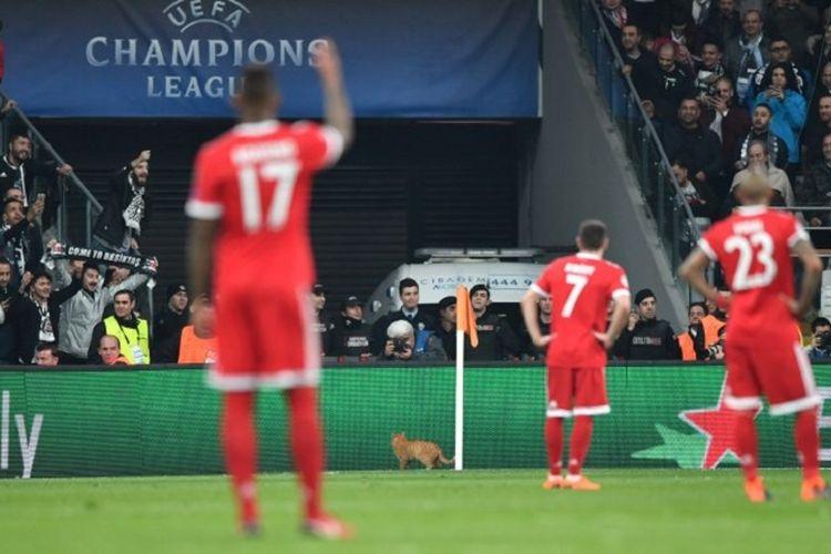 Pertandingan Liga Champions antara Besiktas dan Bayern Muenchen di  Besiktas Park, Istanbul, sempat terganggu karena ada kucing masuk ke lapangan, 14 Maret 2018.