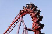 Ig Nobel 2018: Naiklah 'Roller Coaster' untuk Sembuhkan Batu Ginjal