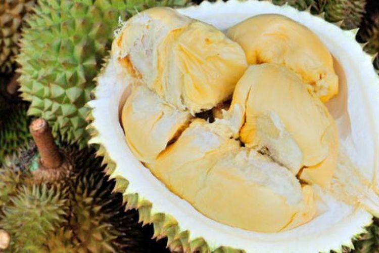 Durian Siak, Riau.