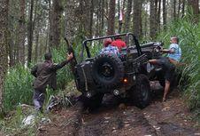 Deg-degan Menyusuri Lereng Lawu di Mojosemi Forest Park