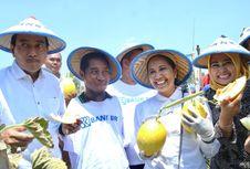 Ketika Menteri Rini Bertemu Petani Difabel yang Sukses Garap Melon