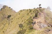 Lebih Dua Pekan Ditutup, Jalur Pendakian Gunung Merbabu Kini Dibuka