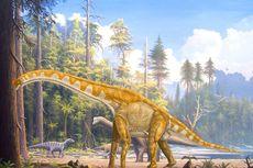 Jejak Dinosaurus Langka Diselamatkan dari Banjir Bandang Australia