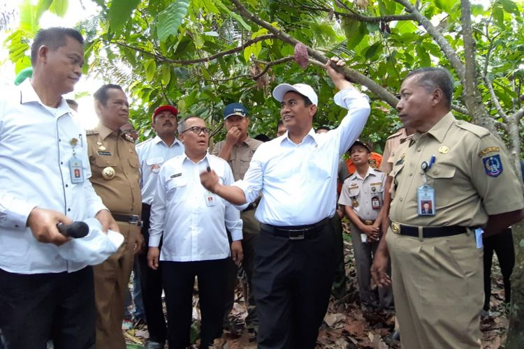 Kunjungan Menteri Pertanian Andi Amran Sulaiman ke Kabupaten Luwu, Sulawesi Selatan, Senin (11/3/2019).