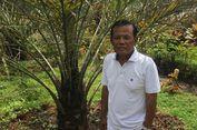 Kisah Soeparlan, Pemilik Kebun Kurma di Magetan