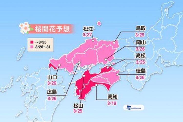 Prediksi sakura mekar di wilayah area Chugoku dan Shikoku (Prediksi diumumkan tanggal 16 Januari 2019/ Weather News).