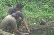 Pipa Pertamina Kembali Bocor, Minyak Mentah Tumpah Cemari Lingkungan