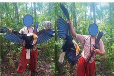 Viral soal Pria Menembak Burung Rangkong, Ini Tanggapan KLHK