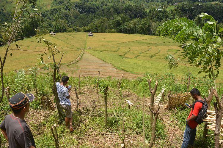 Persawahan Lingko Marang berbentuk Jaring Laba-Laba di Kampung Tado, Desa Ranggu, Kecamatan Kuwus Barat, Flores, NTT, Minggu, (31/3/2019). Ini merupakan salah satu destinasi wisata alam di Lembah Ranggu-Kolang Flores Barat.